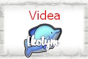 Ekotým - videa
